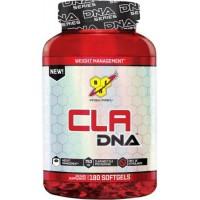 Конъюгированная линолевая кислота BSN CLA DNA