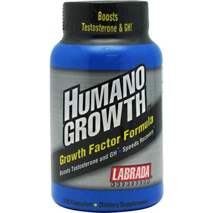 Повышение тестостерона HumanoGrowth