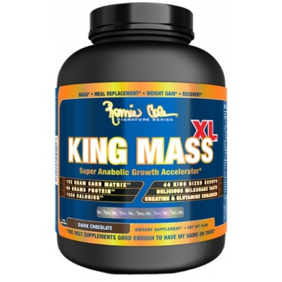 Гейнер King Mass XL